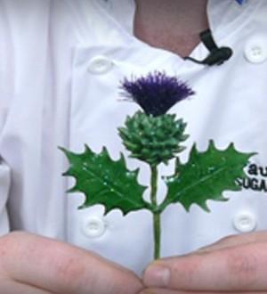 Picture of sugar Scottish thistle