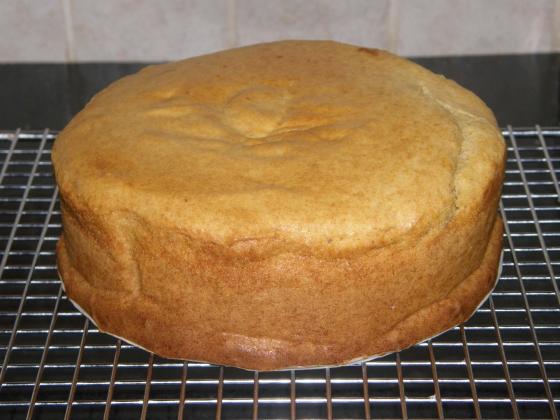 Egg-Free-Cake-Eggless-vanilla-sponge-560x420