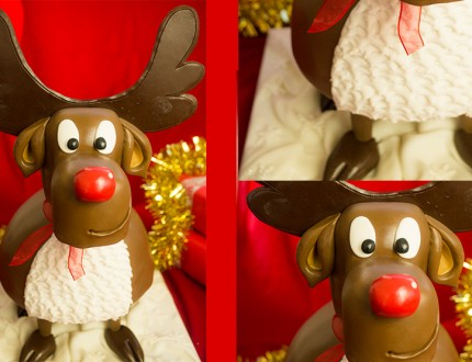 Picture of rudolph cake