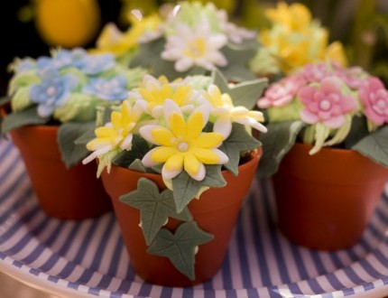 Picture of mini edible flower pots