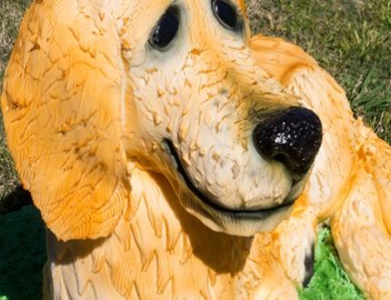The Dog Cake