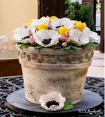 Antique Flower Pot Cake