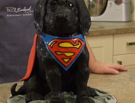 3D Dog Cake | Superdog