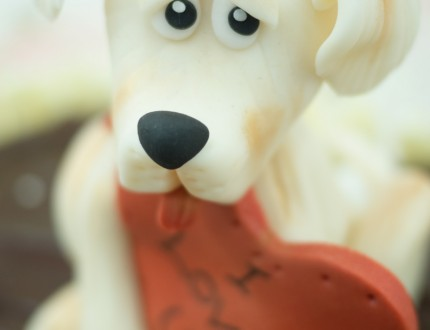 Close up of modelled dog's face