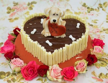 Modelled dog sat on chocolate cake