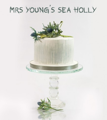 Mrs Young's Sea Holly Cake Decorating and Baking Tutorial