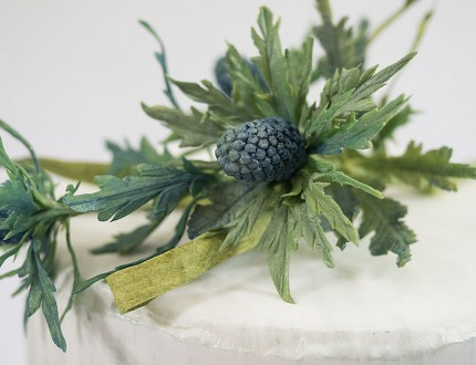 Close up of sea holly sugar flowers