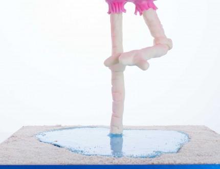 flamingo legs