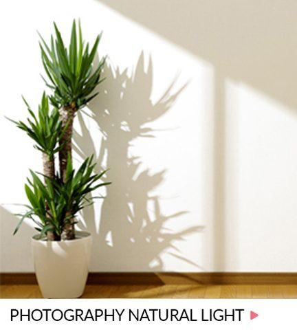 Photography natural light