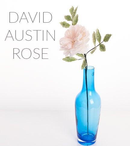 david austin rose cake tutorial