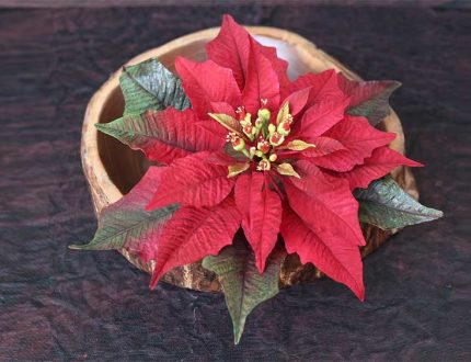 red poinsettia cake tutorial