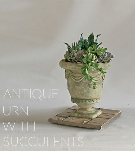Antique Urn with Succulents