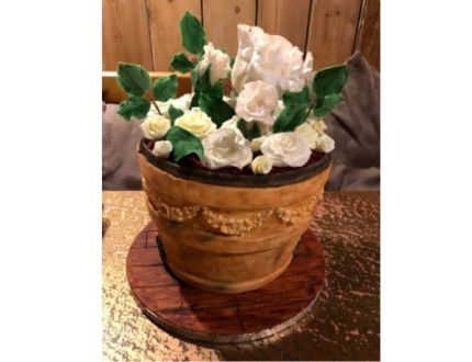 antique plant pot cake