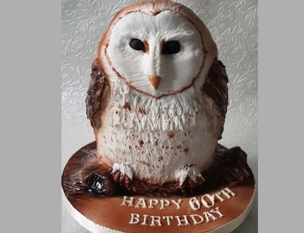 ken willis cake of the month - owl cake