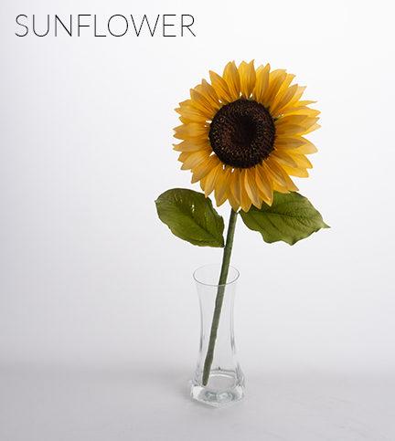 Sunflower – Bite Sized