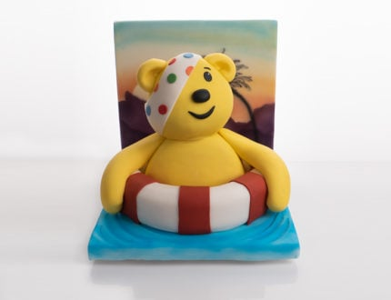 Pudsey on Holiday