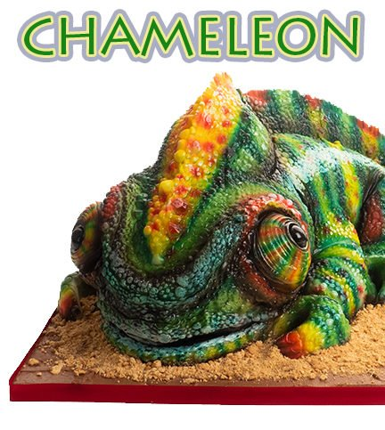 Chameleon – Bite Sized