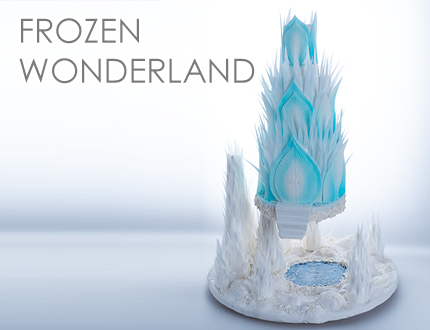 Frozen Wonderland