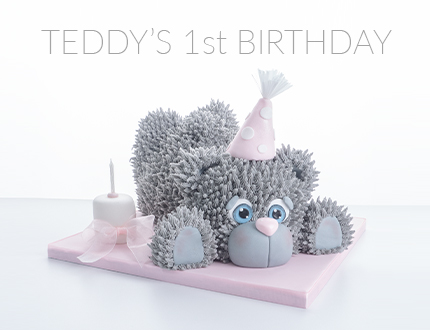 Teddy's 1st Birthday