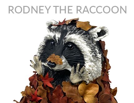 Rodney the Raccoon