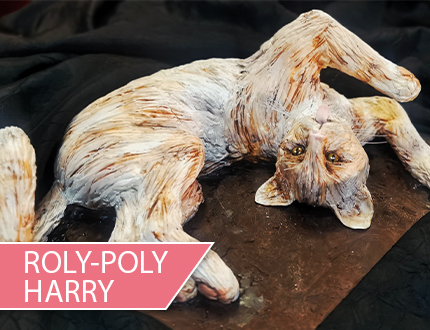 Roly-Poly Harry