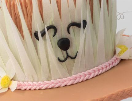 Eater Bonnet Face close up