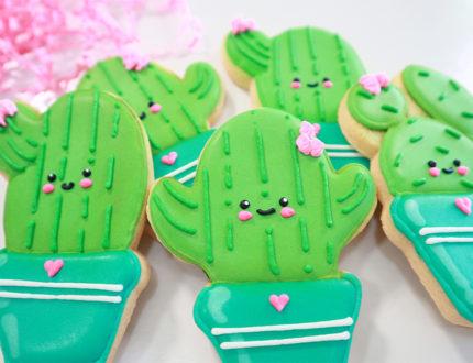 beginners sugar cookies front view