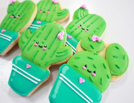 beginners sugar cookies side angle 2