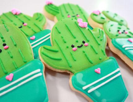 beginners sugar cookies close up