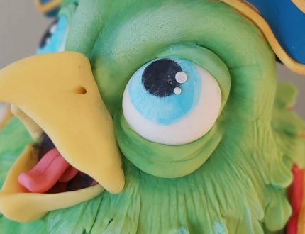 pirate parrot gallery close up face