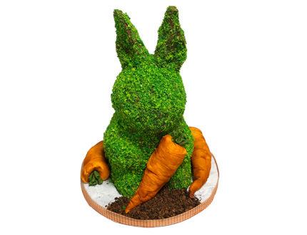 Topiary Bunny on board