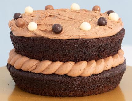 chocolate cake full shot
