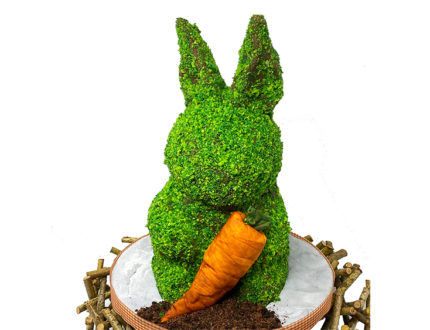 Topiary Bunny close