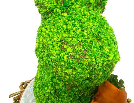 Topiary Bunny face close
