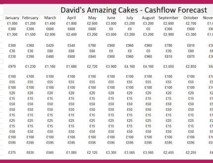 Cashflow plan