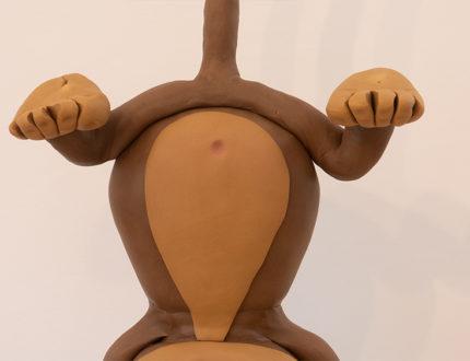 cheeky monkey body