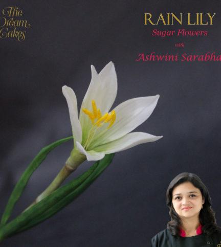 Rain Lily – Bite Sized