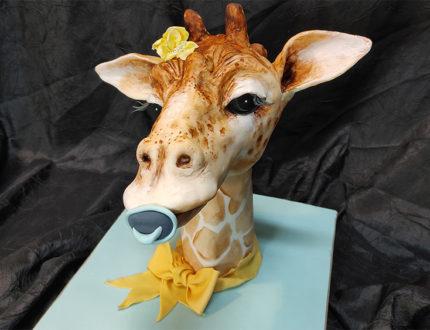 Baby Giraffe Full
