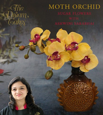 Moth Orchid Sugar Flower