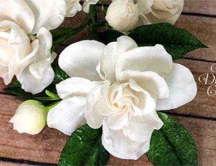Floral arrangement part 1 flower close up 1